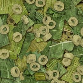 Akva. rostlina PREMIUM LARGE (38 až 42CM) 502